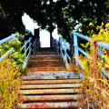 Manayunk Steps by Bill Cannon