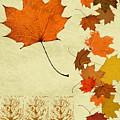 Maple Leaf by Pederbeck Arte Gruppe
