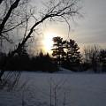 March Sunrise Behind Pines by Kent Lorentzen