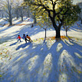 Markeaton Park Early Snow by Andrew Macara
