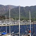 Marmaris Port by Svetlana Sewell