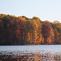 Maryland Autumns - Clopper Lake - Fall Bloom by Ronald Reid