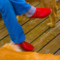 Marys Red Shoes by John Toxey