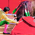 Matador On Knees by Clarence Alford