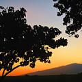 Maui Road Sunset by Joan  Minchak