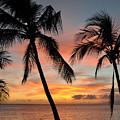 Maui Sunset Palms by Kelly Wade