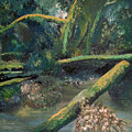 Mclane From The Bridge by Richard Beauregard