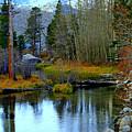 Meandering River by Lynn Bawden