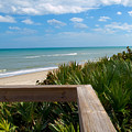 Melbourne Beach In Florida by Allan  Hughes