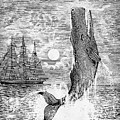 Melville: Moby Dick by Granger