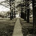 Memory Lane by Carl Perry
