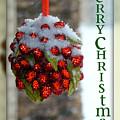 Merry Christmas by Lisa Knechtel