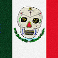 Mexican Flag Of The Dead by Bill Cannon