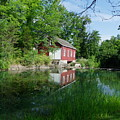Mill Pond by Peggy King