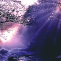 Mist Of Ireland by Matthew Altenbach