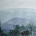 Misty Shenandoah by Donna Walsh