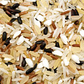 Mixed Rice by Fabrizio Troiani