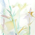 Mixed Stalks Morning Flowers by James Christiansen