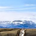 Montana Scenery One by Susan Kinney