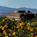 Monte Alban 4 by Michael Peychich