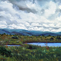 Moody Wetlands by Laura Iverson