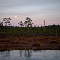 Moon Over Wetlands by Jouko Lehto