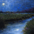 Moonlight Marsh by Susan Jenkins