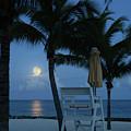 Moonlight Serenade by Angie Bechanan