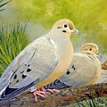 Morning Doves by Barry Louwerse