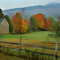 Morning Grove - New England Fall Monadnock Farm by Jon Holiday