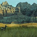 Morning In The Badlands by Julie Clements