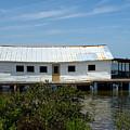 Mosquito Lagoon Florida by Allan  Hughes