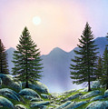 Mountain Firs by Frank Wilson