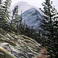 Mountain Pathway by Patricia L Davidson