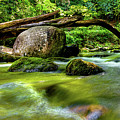 Mountain Stream by Christopher Holmes