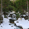 Mountain Stream by Paul Mangold