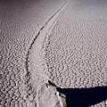 Moving Rocks Number 2  Death Valley Bw by Steve Gadomski