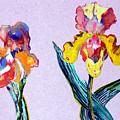 Mr. And Mrs. Yellow Iris by Mindy Newman