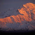 Mt. Mckinley Sunset by Sandra Bronstein