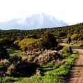 Mt. Sopris - A Colorado Landscape by Christine S Zipps