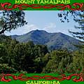 Mt Tamalpais Framed 5 by Ben Upham III