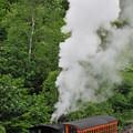 Mt Washington Cog Railroad by Brian Hoover