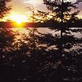 Muskoka Lake Of Bays Sunrise by Steve Somerville