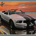 Mustang And Mustang At The Beach by John Breen