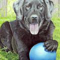 My Big Blue Ball by Beverly Fuqua