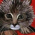 My Kittie Cat by Pilar  Martinez-Byrne