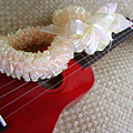 My Little Red Ukulele by Mary Deal