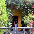 My Neighbors Yellow House by Sarah Hornsby