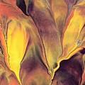 Mystic Fire 1 by Linda Stevenson