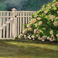 Nantucket Fence Number Two by Andrea Birdsey Kelly